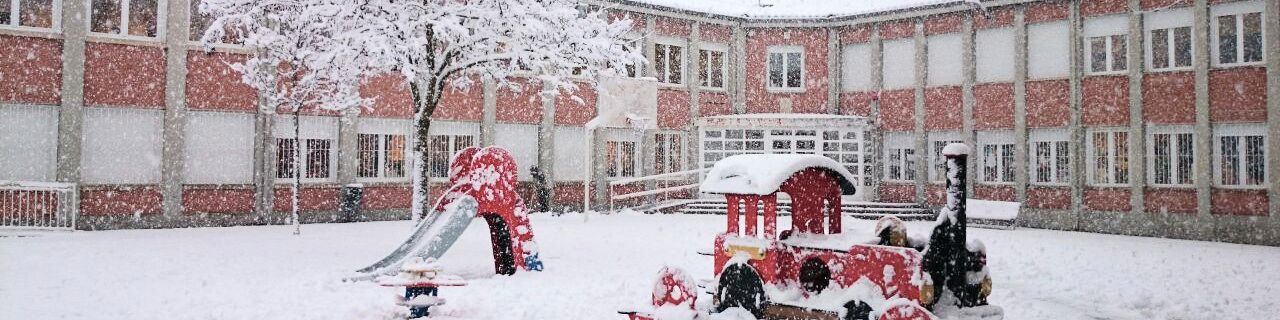 Cole con nieve